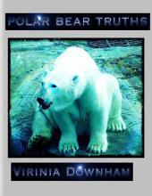 Polar Bear Truths