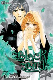 Black Bird: Volume 7