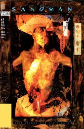 The Sandman (1988-) #74
