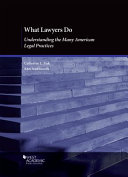 What Lawyers Do PDF