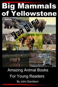 Big Mammals Of Yellowstone For Kids  Amazing Animal Books for Young Readers PDF