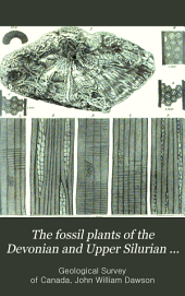 The Fossil Plants of the Devonian and Upper Silurian Formations of Canada