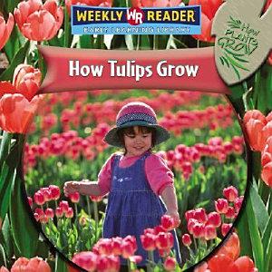 How Tulips Grow PDF
