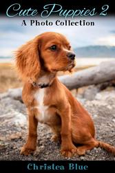 Cute Puppies 2  A Photo Collection PDF