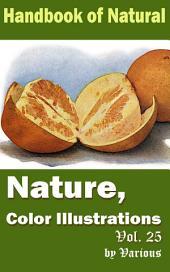 Nature, Color Illustrations Vol.25: Handbook of Nature
