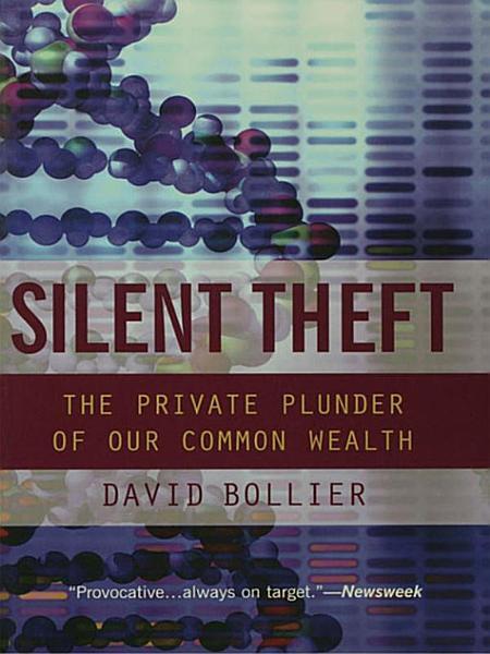 Silent Theft PDF
