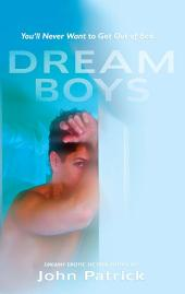 Dreamboys: A New Collection of Erotic Tales