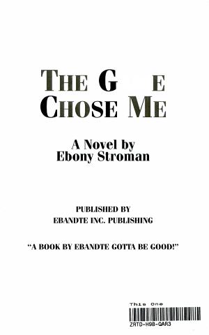The Game Chose Me PDF