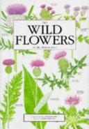 The Wild Flowers of the British Isles