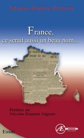 France, ce serait aussi un beau nom: Essai