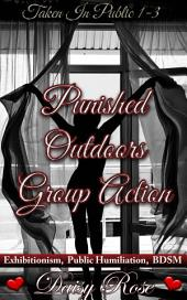 "Punished Outdoors Group Action: Books 1 - 3 of ""Taken In Public"""
