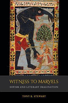 Witness to Marvels PDF