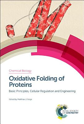 Oxidative Folding of Proteins