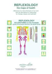 REFLEXOLOGY - SCLEROTOMES on the frontside: REFLEXOLOGY - the maps of health