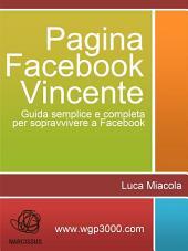 Pagina Facebook Vincente