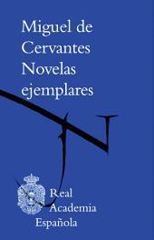 Novelas ejemplares (Adobe PDF)