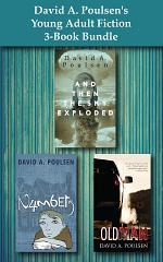 David A. Poulsen's Young Adult Fiction 3-Book Bundle
