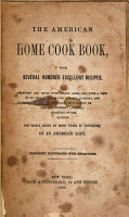 The American Home Cook Book PDF