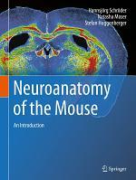 Neuroanatomy of the Mouse