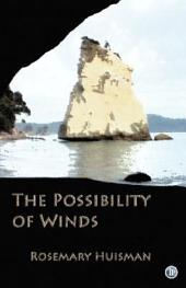 The Possibility of Winds