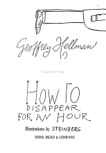 How to Disappear for an Hour PDF