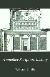 A smaller Scripture history