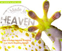 Made in Heaven  Man s Indiscriminate Stealing of God s Amazing Design