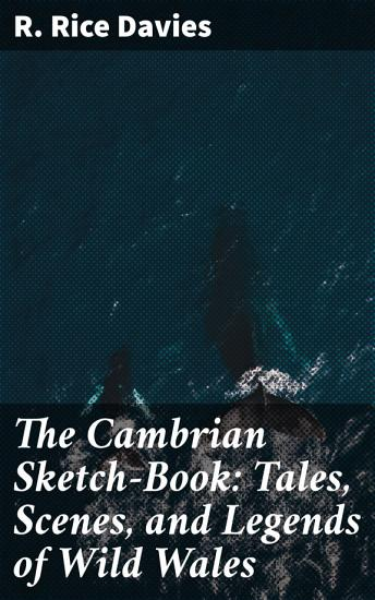 The Cambrian Sketch Book  Tales  Scenes  and Legends of Wild Wales PDF