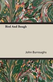 Bird And Bough