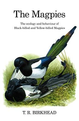 The Magpies  The Ecology and Behaviour of Black Billed and Yellow Billed Magpies