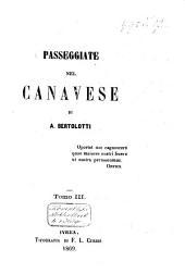 Passeggiate nel Canavese: Volume 3