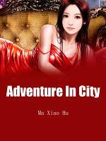 Adventure In City PDF