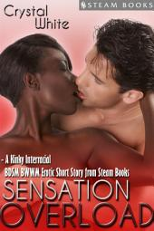 Sensation Overload - A Kinky Interracial BDSM BWWM Erotic Short Story from Steam Books