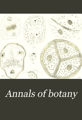 Annals of Botany: Volume 20