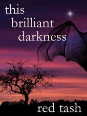 This Brilliant Darkness: A Dark Contemporary Fantasy