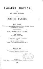 English Botany: Or, Coloured Figures of British Plants