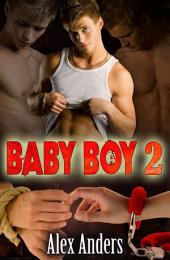 Baby Boy 2: Corrupted