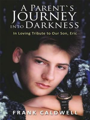 A Parent S Journey into Darkness PDF