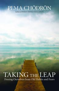 Taking the Leap Book