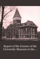 Report of the Curator of the University Museum to the Board of Regents