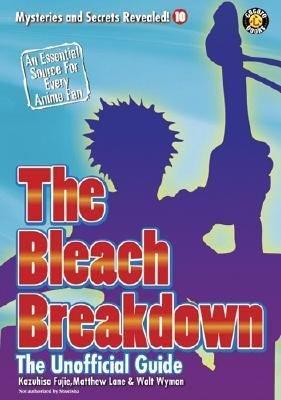 The Bleach Breakdown PDF