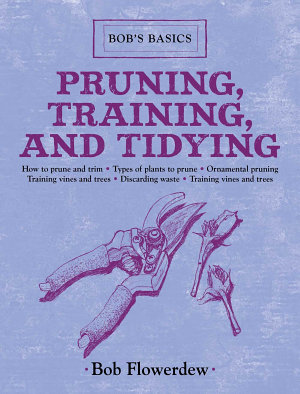 Pruning  Training  and Tidying