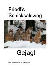 Friedl's Schicksalsweg Buch 2: Gejagt (1918-1922)