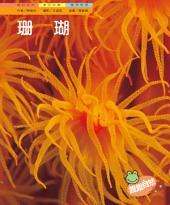 珊瑚: 親親自然123