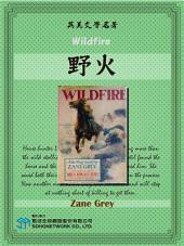 Wildfire (野火)