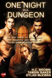 One Night in a Dungeon: Anthology
