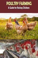 A Step by Step Guide for Poultry Farming: Everthing about Raising Chickens