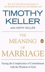 The Meaning of Marriage Book