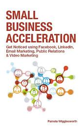 Small Business Acceleration: Get Noticed using Facebook, LinkedIn, Email Marketing, Public Relations and Video Marketing