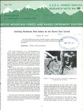Grafting ponderosa pine scions on the parent root system